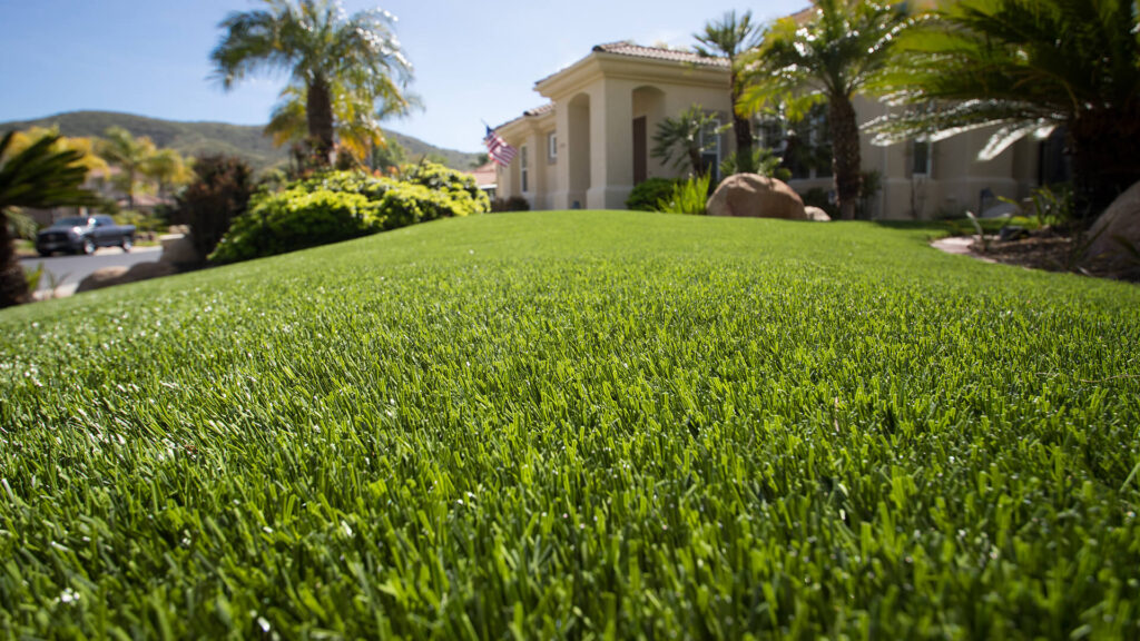 residential lawn built with artificial grass